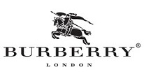 burberryy - Burberry BE4271 Modeli